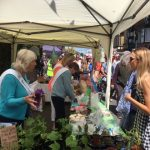Bembridge Street Fair 2019