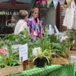 cropped-Street-Fair-16-plants.jpg