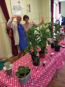 Coffee Morning Plants